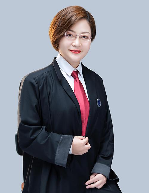 樊文慧  律师