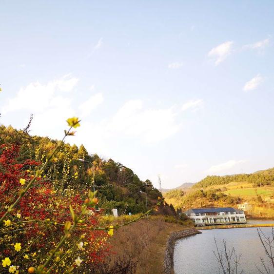 二龙湖环境