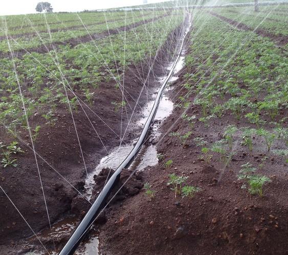 农田灌溉微喷带
