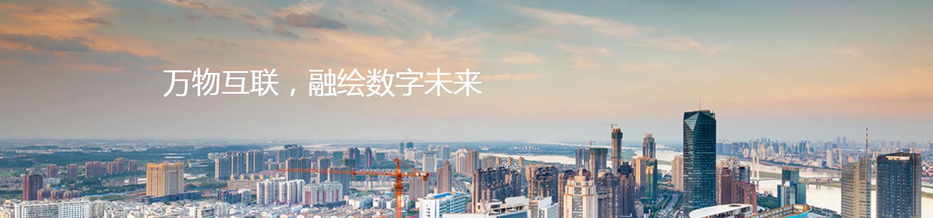 上海华三交换机金牌代理商