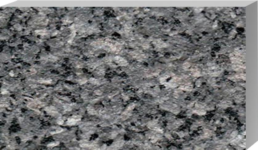 黑白点荔枝面 L1224