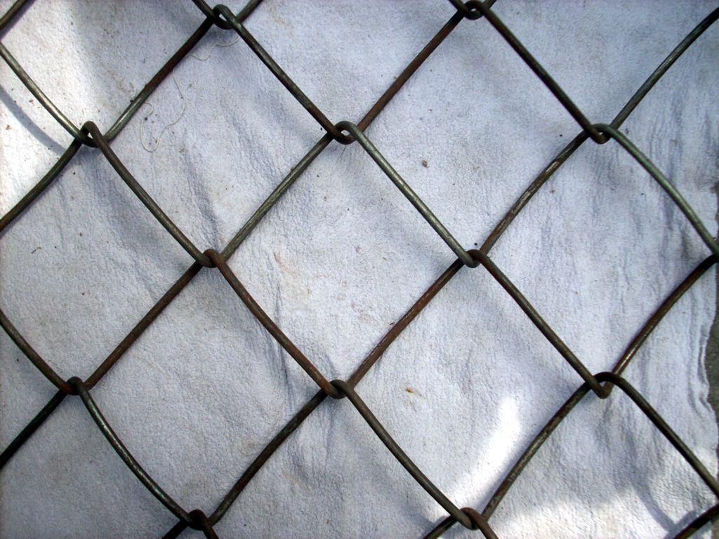 北方地区有可以编盘圆粗的黑铁丝凌形网编网机吗?