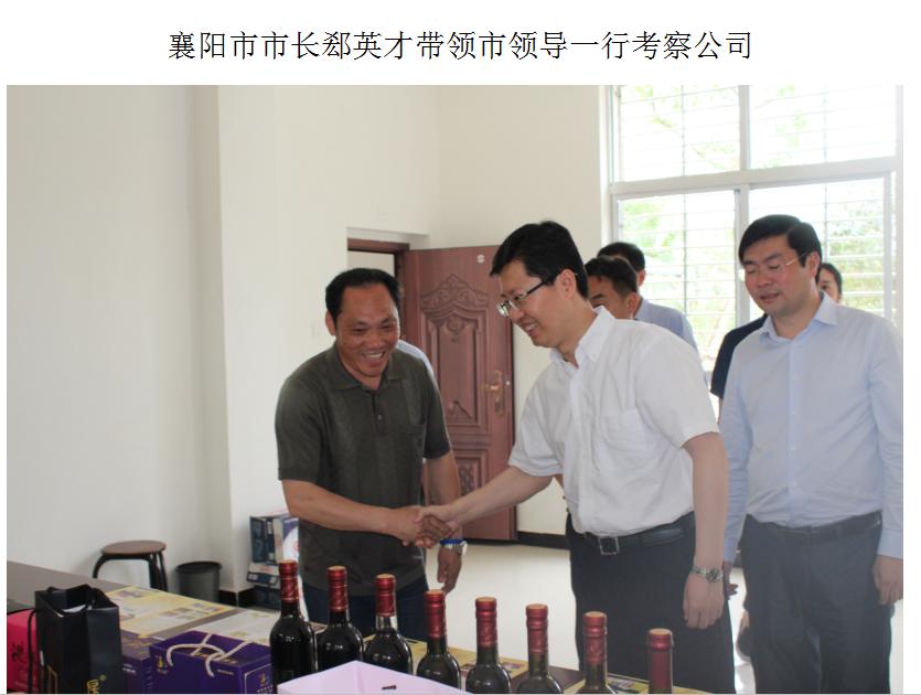 襄陽市市長郄英才帶領市領導一行考察公司
