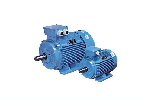 山西YE3系列(IP55)三相异步电动机