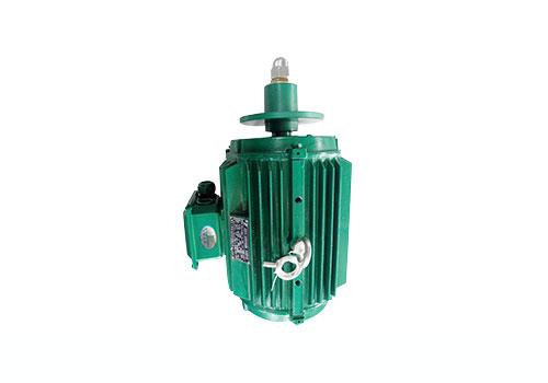 山西YLF系列冷却塔专用三相异步电动机