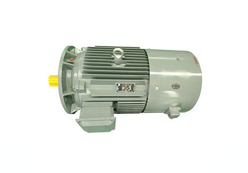 山西YVF2系列变频调速电动机