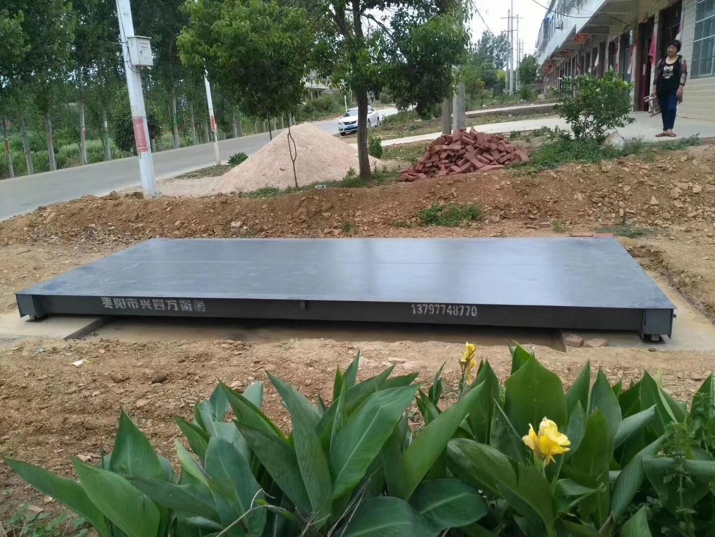 刘升红薯收购站2.5*6米30吨雷电竞ios下载安装