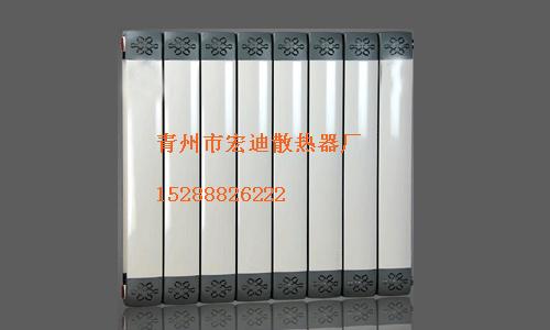 钢铝铜铝散热器10