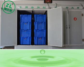 绿庄苑豆芽机淋水系统介绍