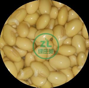 为什么使用商用豆芽机可以三天培育出可上市的豆芽?