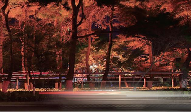 长春新民大街景观照明