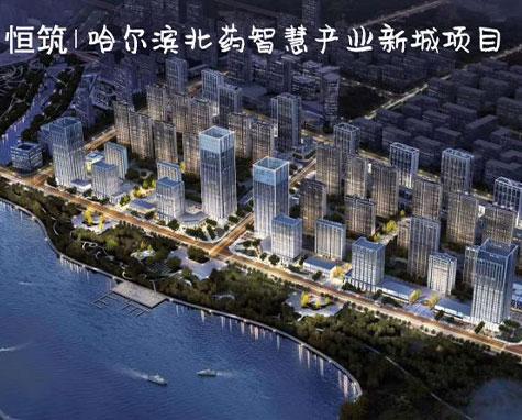 哈尔滨北药项目