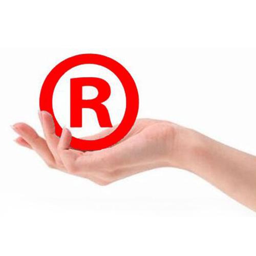 企业品牌商标注册