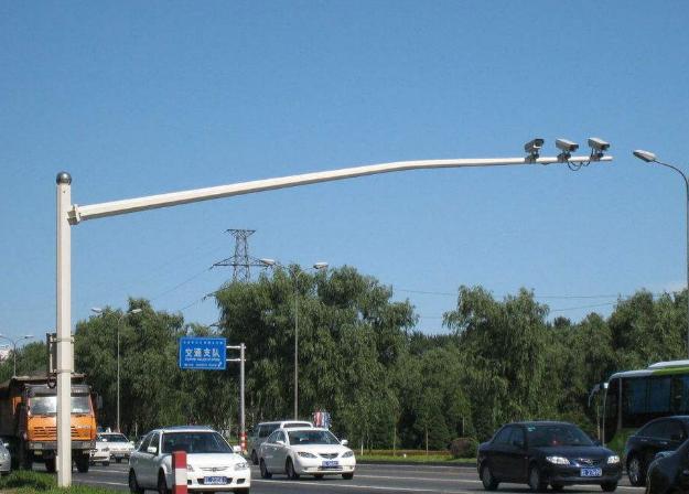 灯杆绿化如何选择?