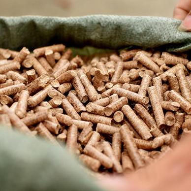 贵州竹屑颗粒