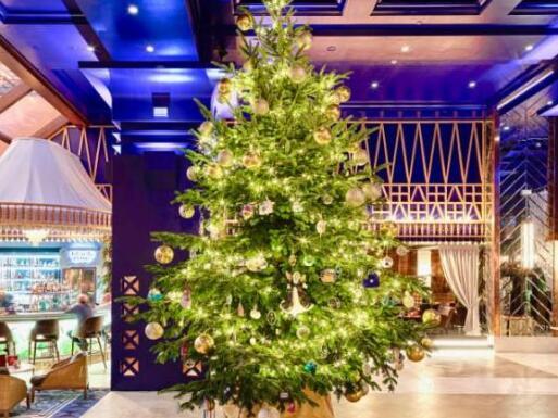 安徽自来水管道清洗加盟邀您查看全球最贵圣诞树?
