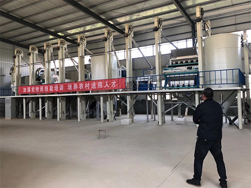 50吨大米加工设备