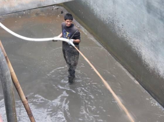 台灣汙水池清算淤泥公司