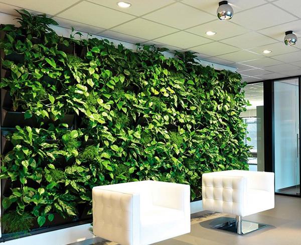 绿色植物墙多少钱一平米?影响价格的五大因素