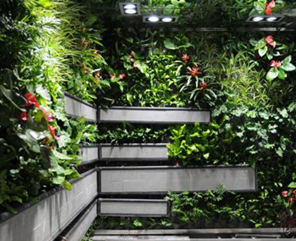 室内立体绿化