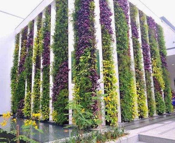 立体绿化景观