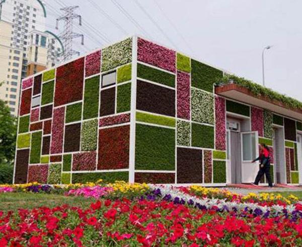 建筑立体绿化
