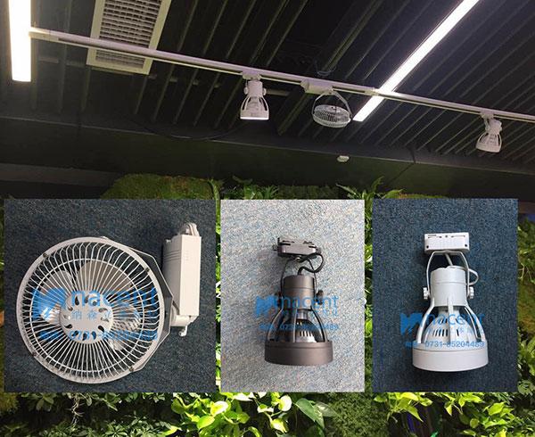 室内植物墙补光灯