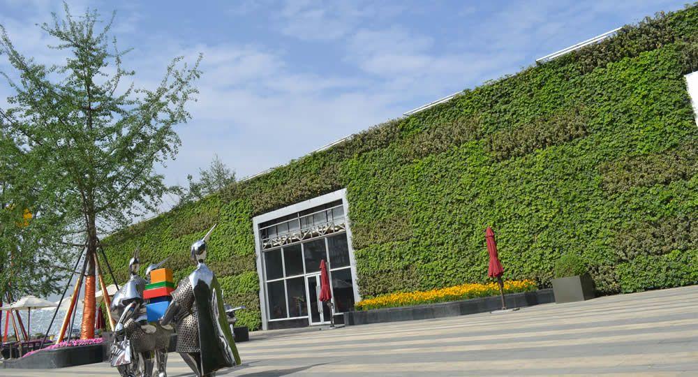 成都绿地选择室外植物墙