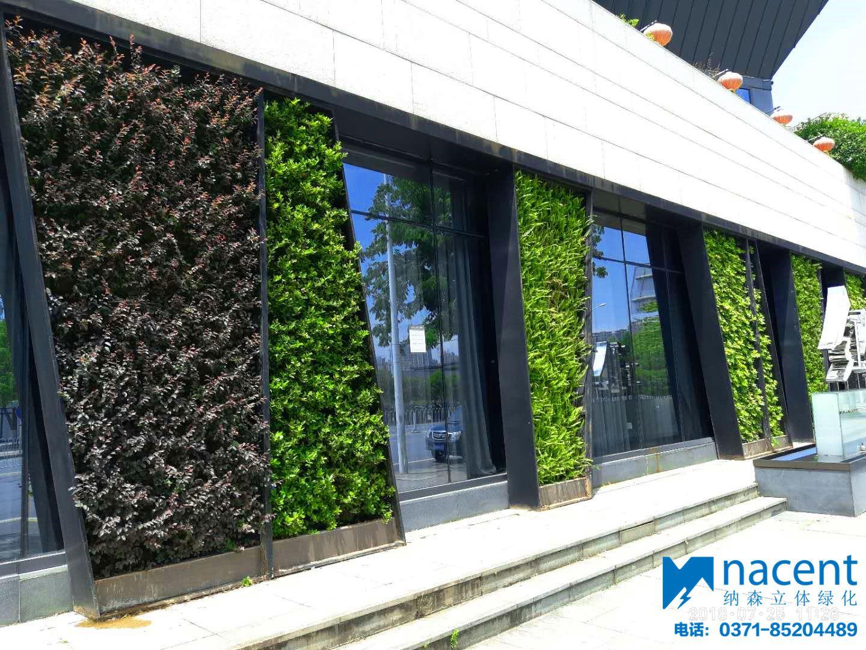 长沙红馆汇餐厅垂直绿化