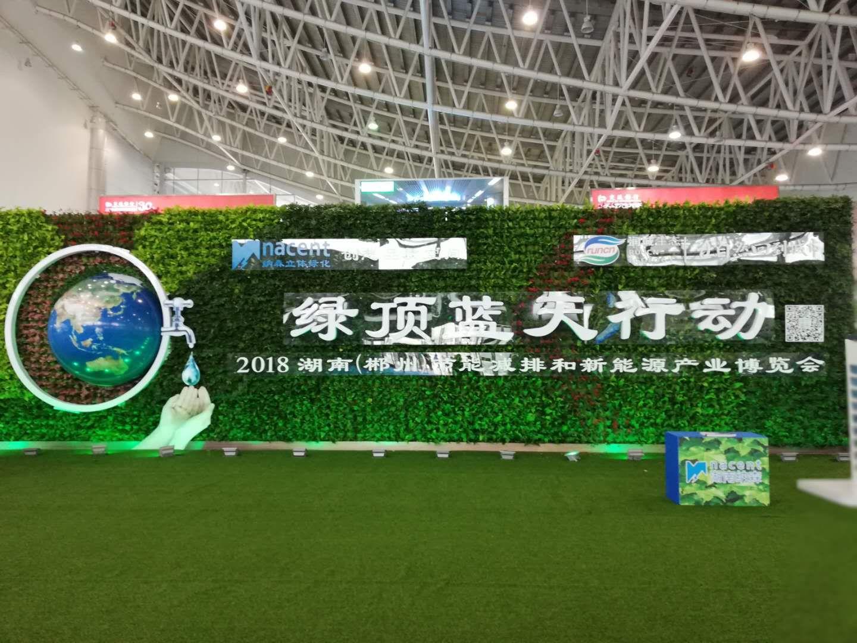 2018年湖南(郴州)会展中心入口生态植物墙