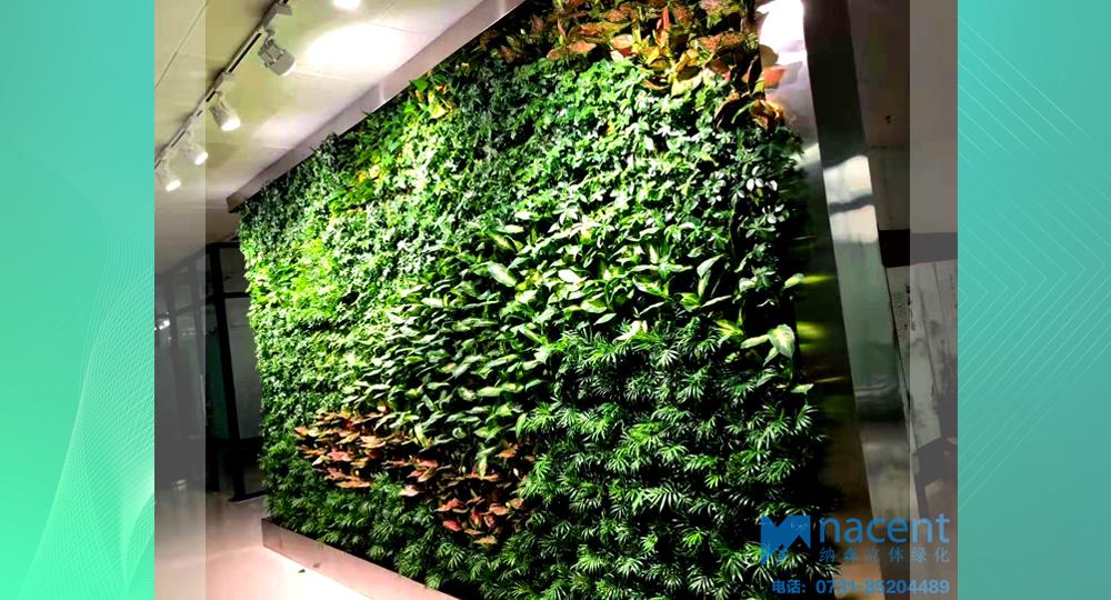 中山市博士创业园室内模块植物墙