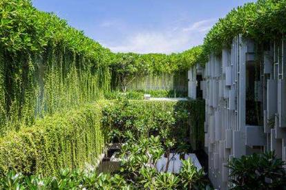 建筑物立体绿化那些事