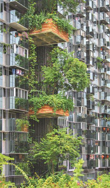 长沙芙蓉区全面推进屋顶绿化 三处花园亮相