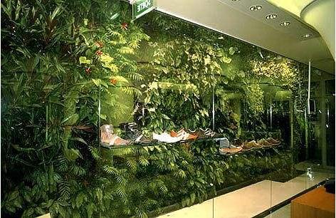 想在室内搞立体绿化,植物墙公司推荐这样的室内植物墙