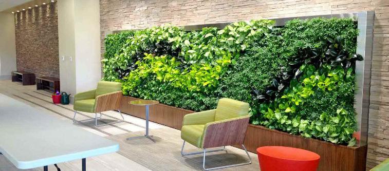 没有室内植物墙的办公室,你敢说高大上