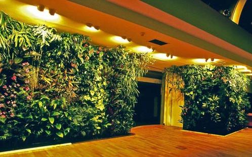 绿化公司邀请您一起把绿色植物墙搬上墙