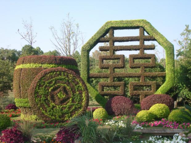 自然与靓丽并重的室内植物墙,你有没有看到过吗?