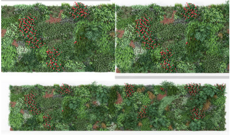 湖南植物墙公司分享植物墙+花景搭配经验,点击查看