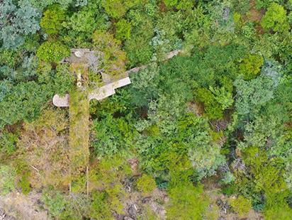 清幽简居,消隐于森林:南非狭长之宅