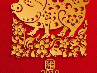 福州新春礼盒