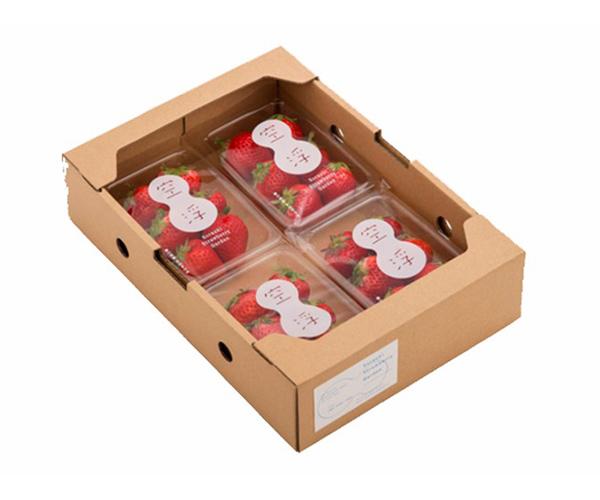 福州水果礼盒
