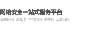 深圳隔离网闸服务商