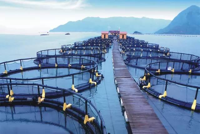 【案例】渔业用水检测