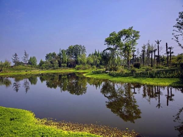 四川庭院人工湿地