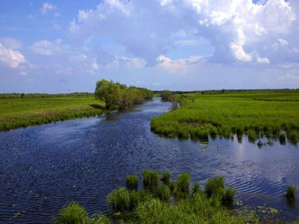 四川河道人工湿地