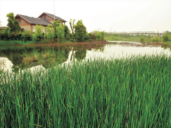 洪雅县分散式农村污水处理