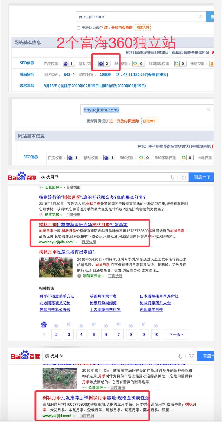 """搜索关键词""""树状月季""""有2个富海独立站排名在首页"""