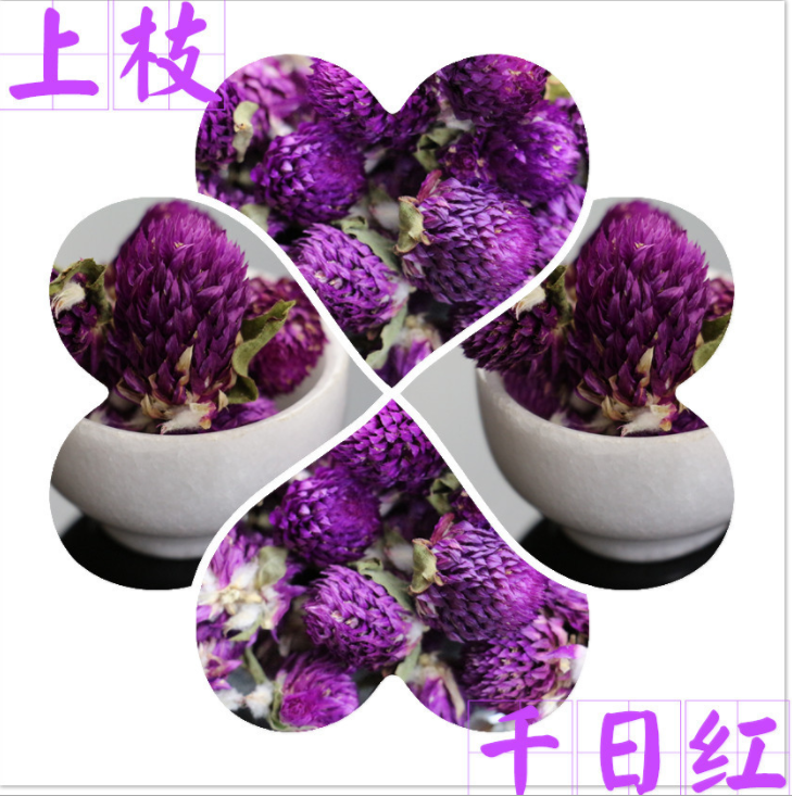 北京农牧产品加工着力发展现代农业