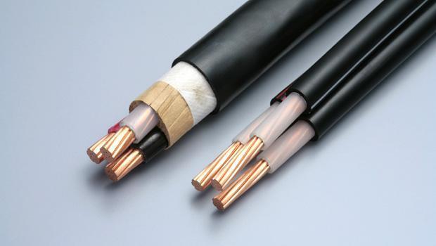 蘭州電力電纜公司