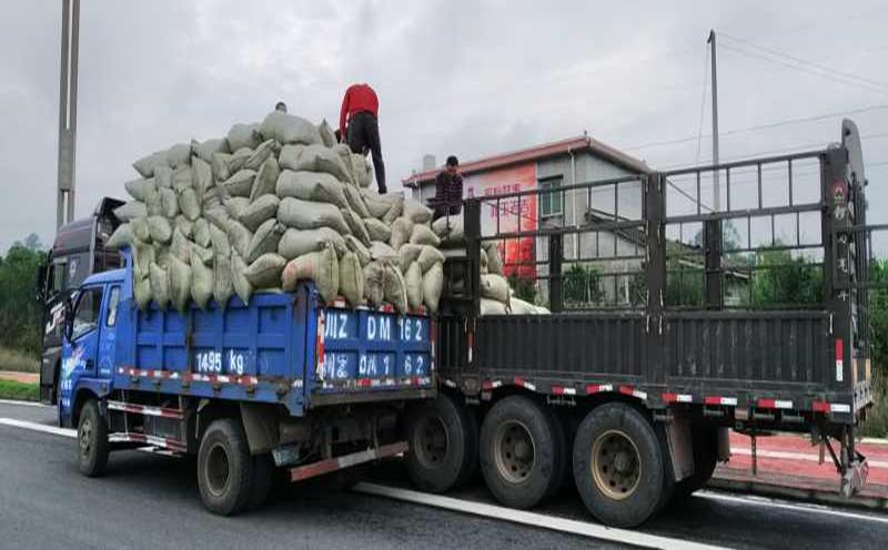 1月李先生在我們這購買了五千斤的干雞糞有機肥料種植馬鈴薯
